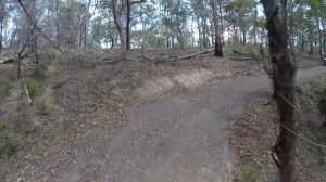 Off-road in Brisbane's southern suburbs on the Carbon GT